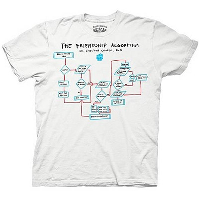 Big Bang Theory: Friendship Algorithm T-Shirt, Junior