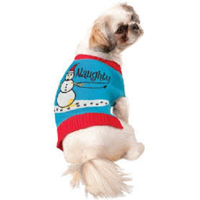Naughty Pet Holiday Sweater